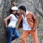 Anthony Yaar Movie Stills
