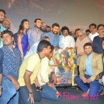 Meen Kuzhambum Manpanayium Movie Audio Launch Photos