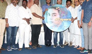 Krishnam Audio Launch Photos