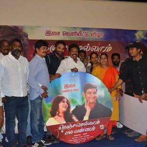 Nenjamellaam Pala Vannam Movie Audio Launch