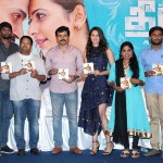 Theeran Adhigaaram Ondru Audio Launch Photos