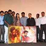 Yaman Audio launch photos