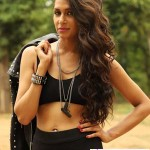 சன்னி லியோனின் சிஸ்டர் மியா ராய் லியோனும் தமிழுக்கு வருகிறார்