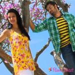 Soodhu Vaadhu movie stills
